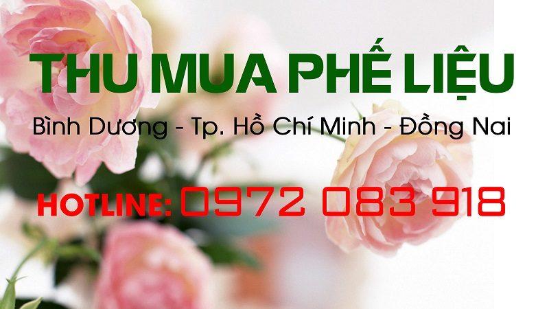 Thịnh Phát thu mua phế liệu giá cao