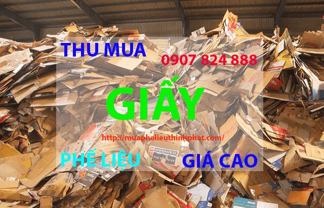 Thu mua giấy phế liệu giá cao
