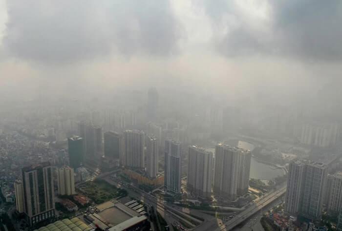 Ô nhiễm môi trường ảnh hưởng đến hệ sinh thái