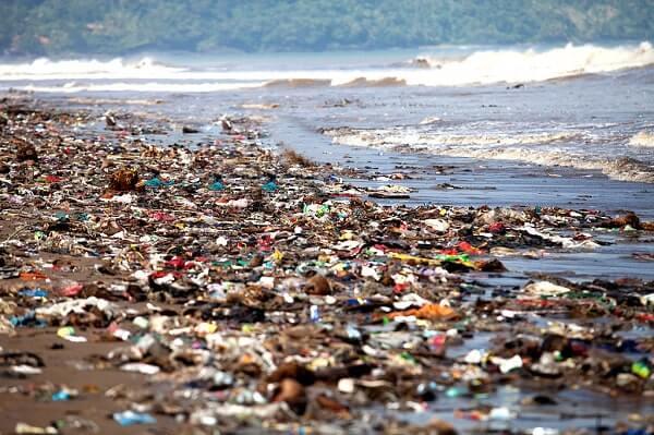 Ô nhiễm môi trường đang là vấn đề của toàn nhân loại