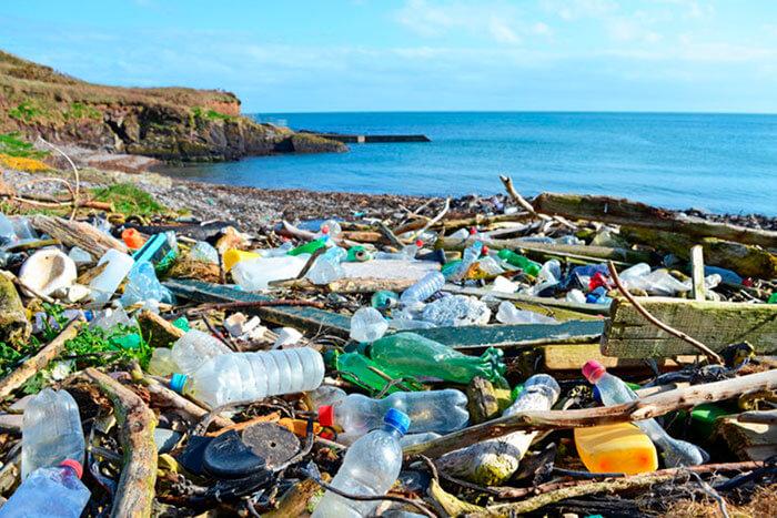 nhựa ngập tràn trên những bãi biển